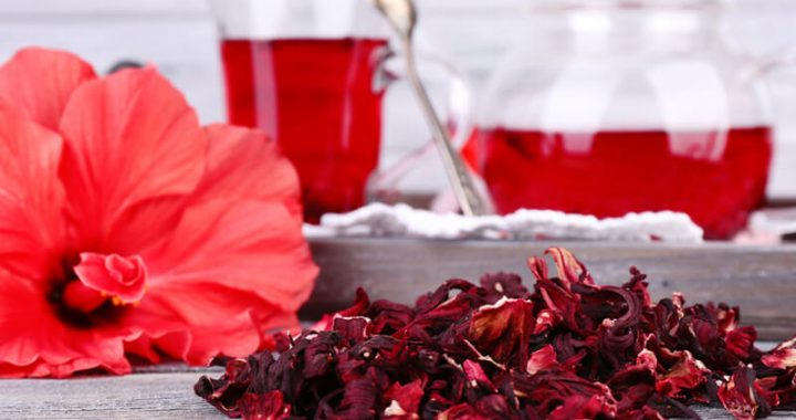 most-important-5-manifestations-hibiscus-treatment-blood-pressure